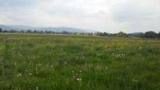 Zemědělský pozemek na prodej, Ropice
