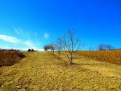 Zemědělský pozemek na prodej, Újezdec