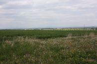 Zemědělský pozemek na prodej, Slatinice