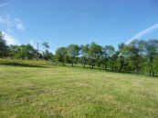 Zemědělský pozemek na prodej, Dolní Domaslavice