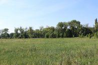 Zemědělský pozemek na prodej, Velký Borek