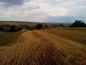 Zemědělský pozemek na prodej, Traplice