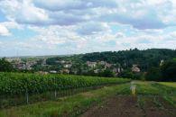 Zemědělský pozemek na prodej, Klobouky u Brna