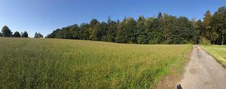 Pozemek na prodej, Ostrava / Svinov