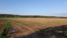 Zemědělský pozemek na prodej, Krumsín