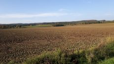Zemědělský pozemek na prodej, Plumlov / Hamry