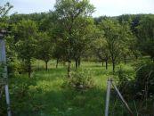 Stavební pozemek na prodej, Komárov