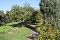 Zahrada na prodej, Doloplazy