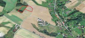 Zemědělský pozemek na prodej, Horní Třešňovec