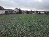 Stavební pozemek na prodej, Bohuslavice