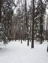 Pozemek na prodej, Luhačovice