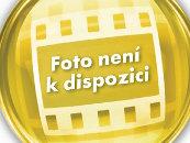 Byt 2+1 k pronájmu, Teplice / Josefa Šafaříka