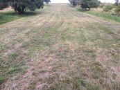 Poľnohospodársky pozemok na predaj, Klenovice na Hané