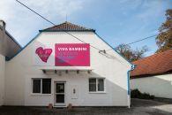 Komerční nemovitost k pronájmu, České Budějovice / České Budějovice 7