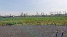 Pozemek pro bydlení na prodej, Paskov (Oprechtice)