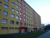 Byt 1+kk k pronájmu, Pardubice / Polabiny, ulice Bělehradská