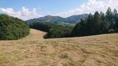 Pozemek na prodej, Kozlovice