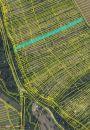 Zemědělský pozemek na prodej, Veletiny