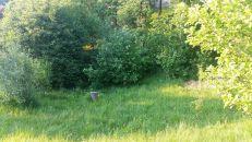 Zahrada na prodej, Přílepy