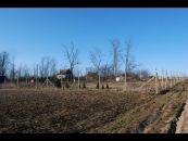 Zahrada k pronájmu, Vrbovec