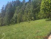 Pozemek na prodej, Benecko / Dolní Štěpanice