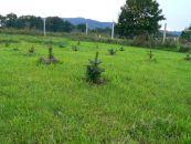 Zemědělský pozemek na prodej, Velké Losiny