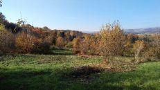 Stavební pozemek na prodej, Teplice / Trnovany
