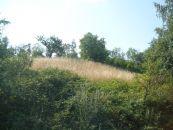 Stavební pozemek na prodej, Podhradí