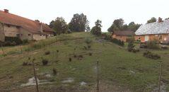 Stavební pozemek na prodej, Suchdol nad Odrou