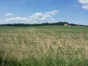 Zemědělský pozemek na prodej, Stará Huť