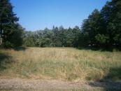 Pozemek pro komerci na prodej, Albrechtice