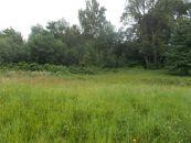 Stavební pozemek na prodej, Mikulovice
