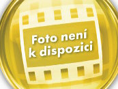 Byt 1+1 k pronájmu, Osek / K. H. Borovského