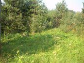 Stavební pozemek na prodej, Horní Bludovice / Prostřední Bludovice