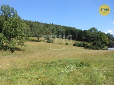 Zemědělský pozemek, Holčovice / Komora - fotografie č. 1