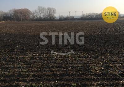 Zemědělský pozemek, Hodonín - fotografie č. 1