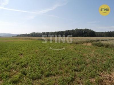 Zemědělský pozemek, Bílá Lhota / Hrabí - fotografie č. 1