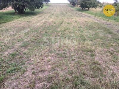Zemědělský pozemek, Klenovice na Hané - fotografie č. 1