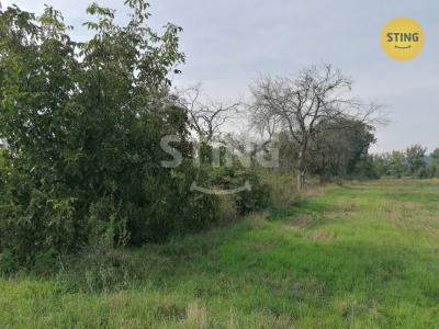 Zemědělský pozemek, Osek nad Bečvou - fotografie č. 1