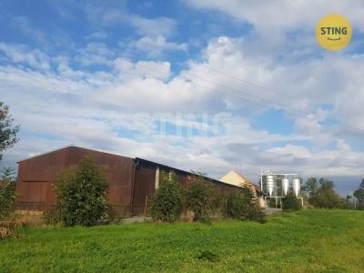 Komerční nemovitost, Rosice / Bor u Chroustovic - fotografie č. 1
