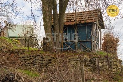 Zahrada, Česká Třebová - fotografie č. 1