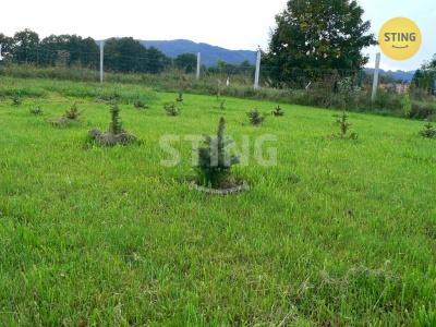 Zemědělský pozemek, Velké Losiny - fotografie č. 1