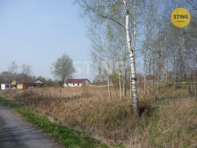 Stavební pozemek, Albrechtice - fotografie č. 1