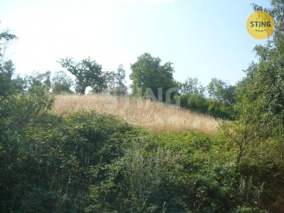 Stavební pozemek, Podhradí - fotografie č. 1