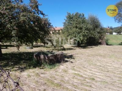 Zahrada, Křemže / Chlum - fotografie č. 1