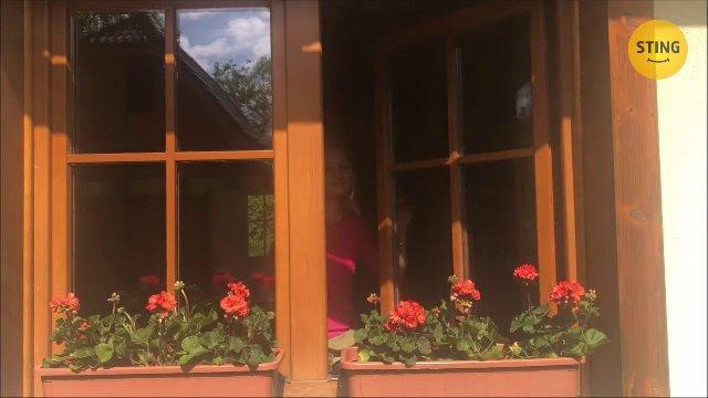 Rodinný dom na predaj, Zádveřice-Raková