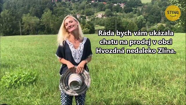 Chata / chalupa na prodej, Hvozdná